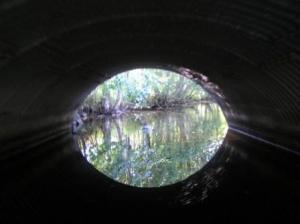 ljusetitunneln